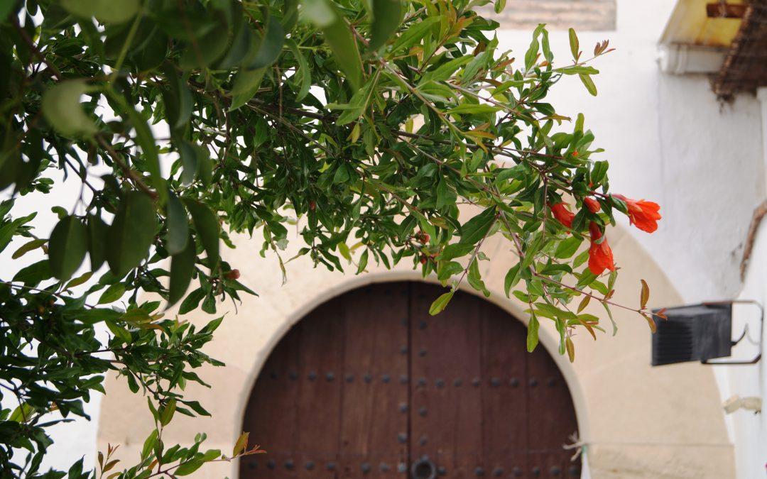 Uno de los mejores apartamentos de Granada